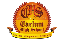 Caelum High an ICSE School in Undri Pune